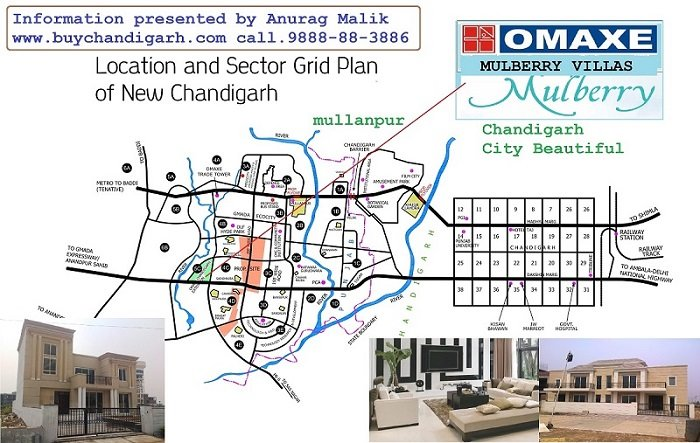 omaxe mulberry villas new chandigarh mullanpur location map